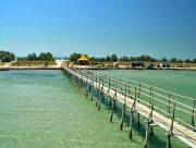 На острові Джарилгач працює безкоштовний екокемпінг для учасників АТО/ООС