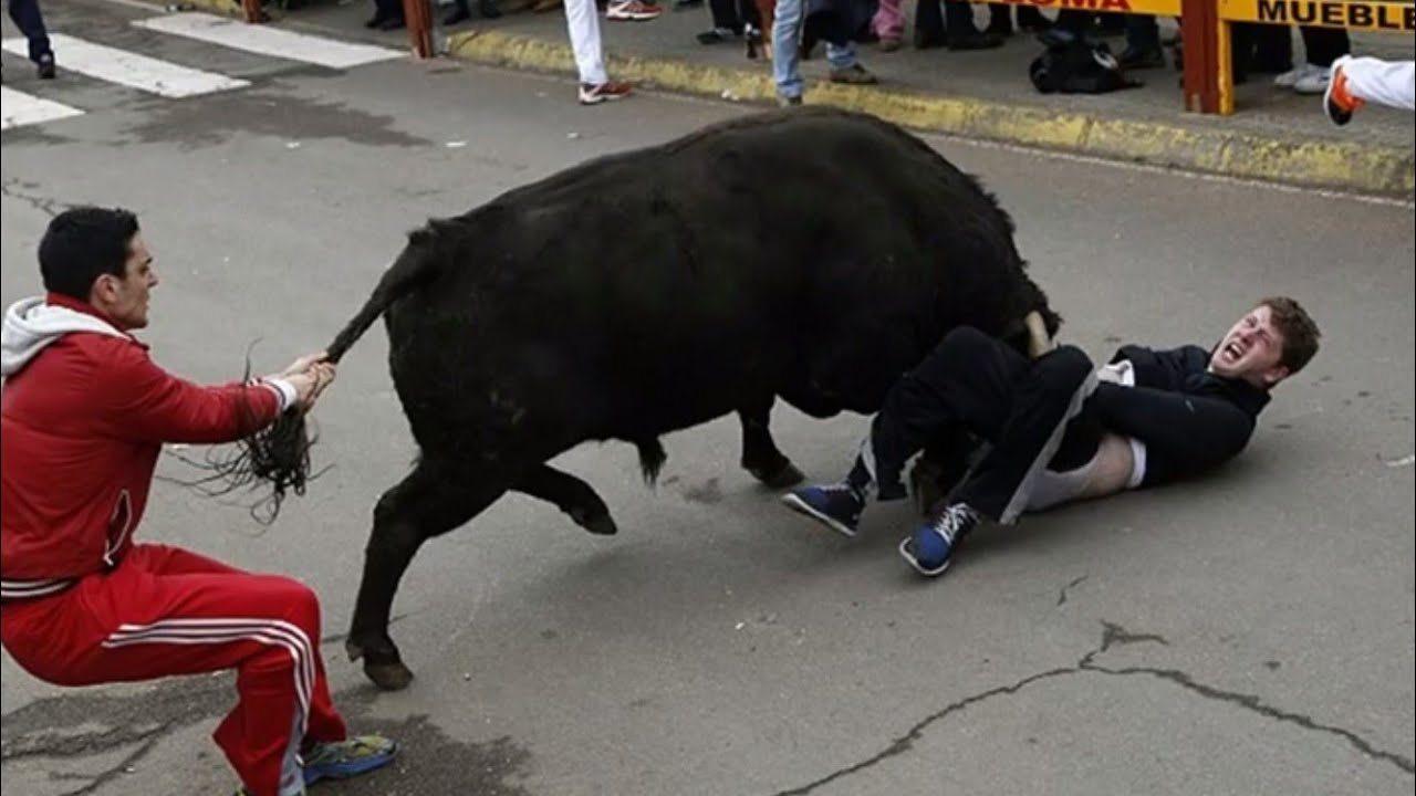 На Херсонщине бык покалечил пастуха