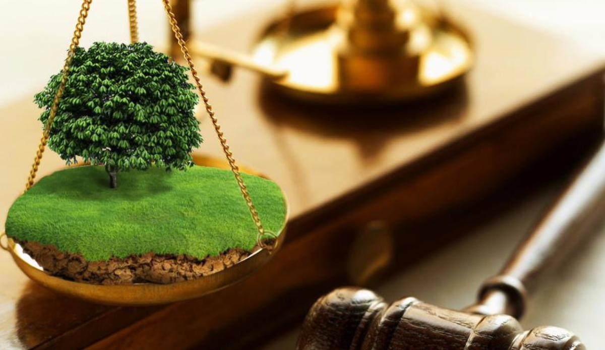 На Херсонщине прокуратура вернула учебному заведению землю стоимостью почти 4 млн грн