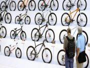 Гид по велосипедам: популярные виды