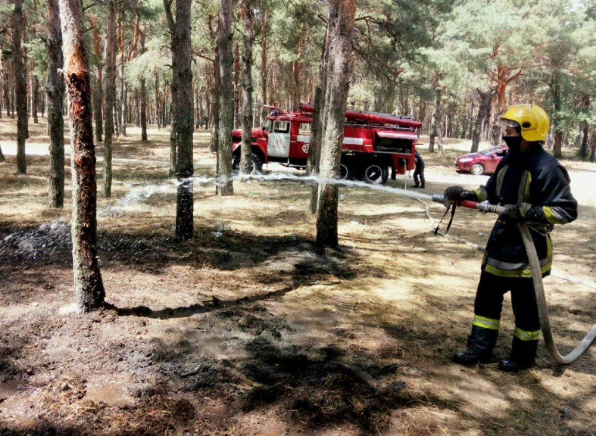 Новокаховское лесничество,Каховка,лесной пожар