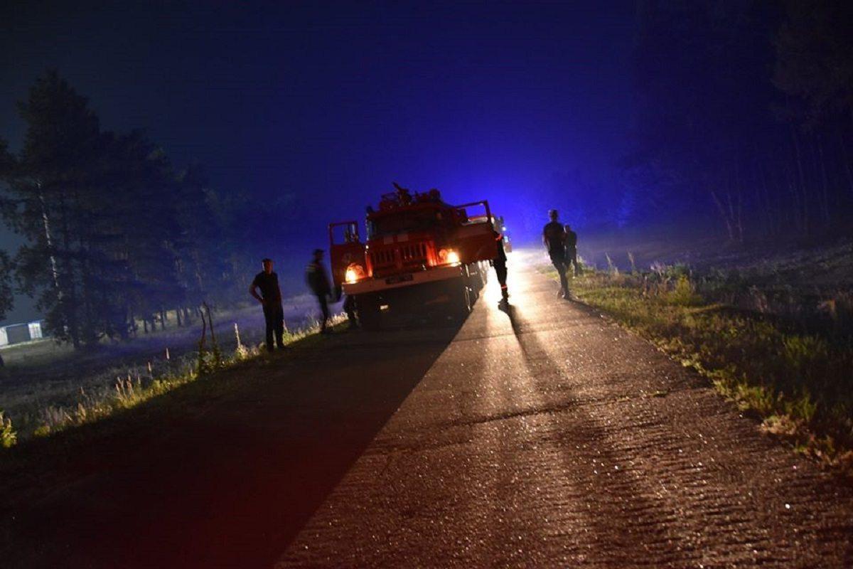 До гасіння лісових пожеж на Луганщині долучилася армія (фото)