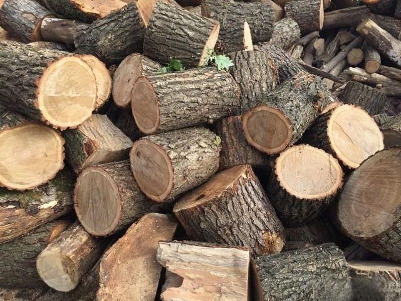 паливо, дешеве, дрова