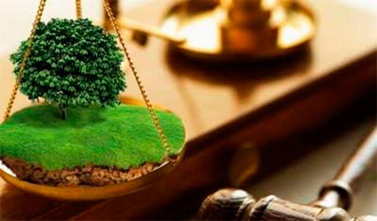 Каховка, земля, суд