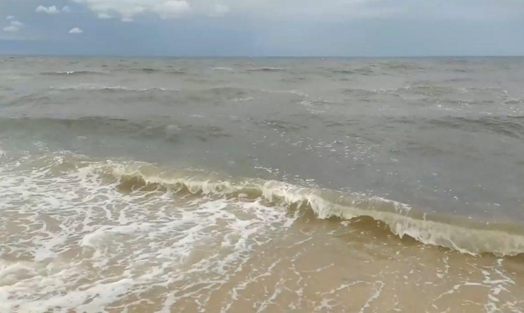 азовський курорт, медузи