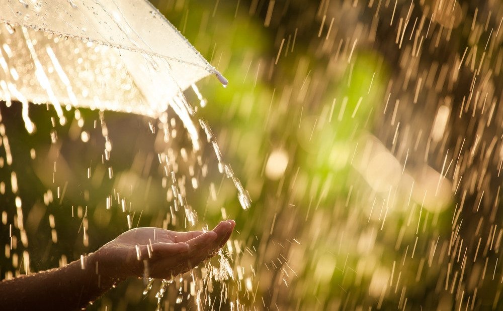 дожди, грозы, погода