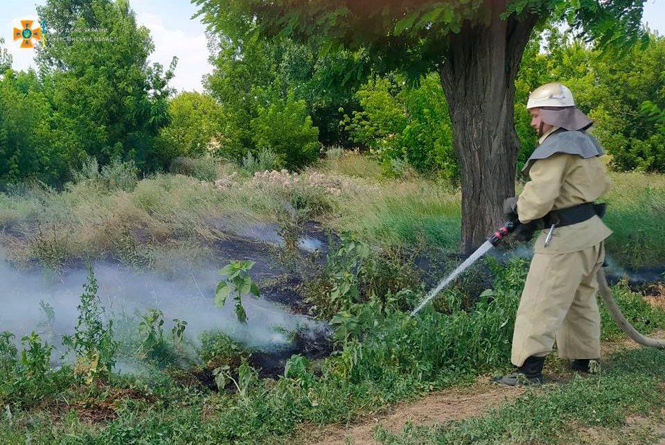 рятувальники, пожежі, екосистеми