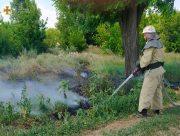Рятувальники закликають громадян не провокувати пожежі в природних екосистемах