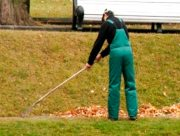На Херсонщинi безробітних залучатимуть до прибирання та озеленення громади