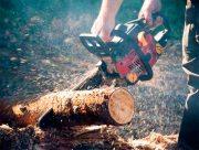 На Херсонщині охоронець лісу постраждав від браконьєрів
