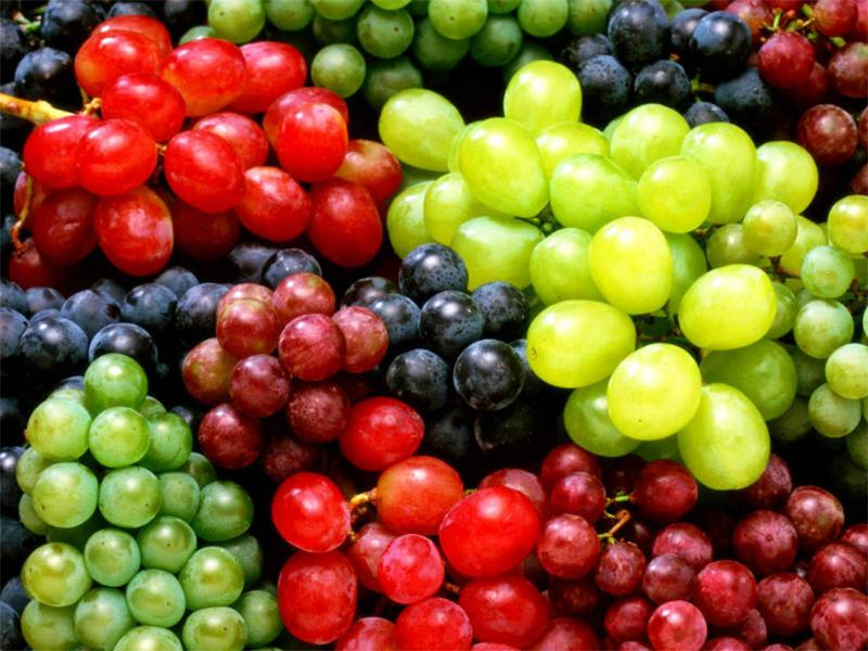 На Херсонщині любителі солодких ягід у захваті