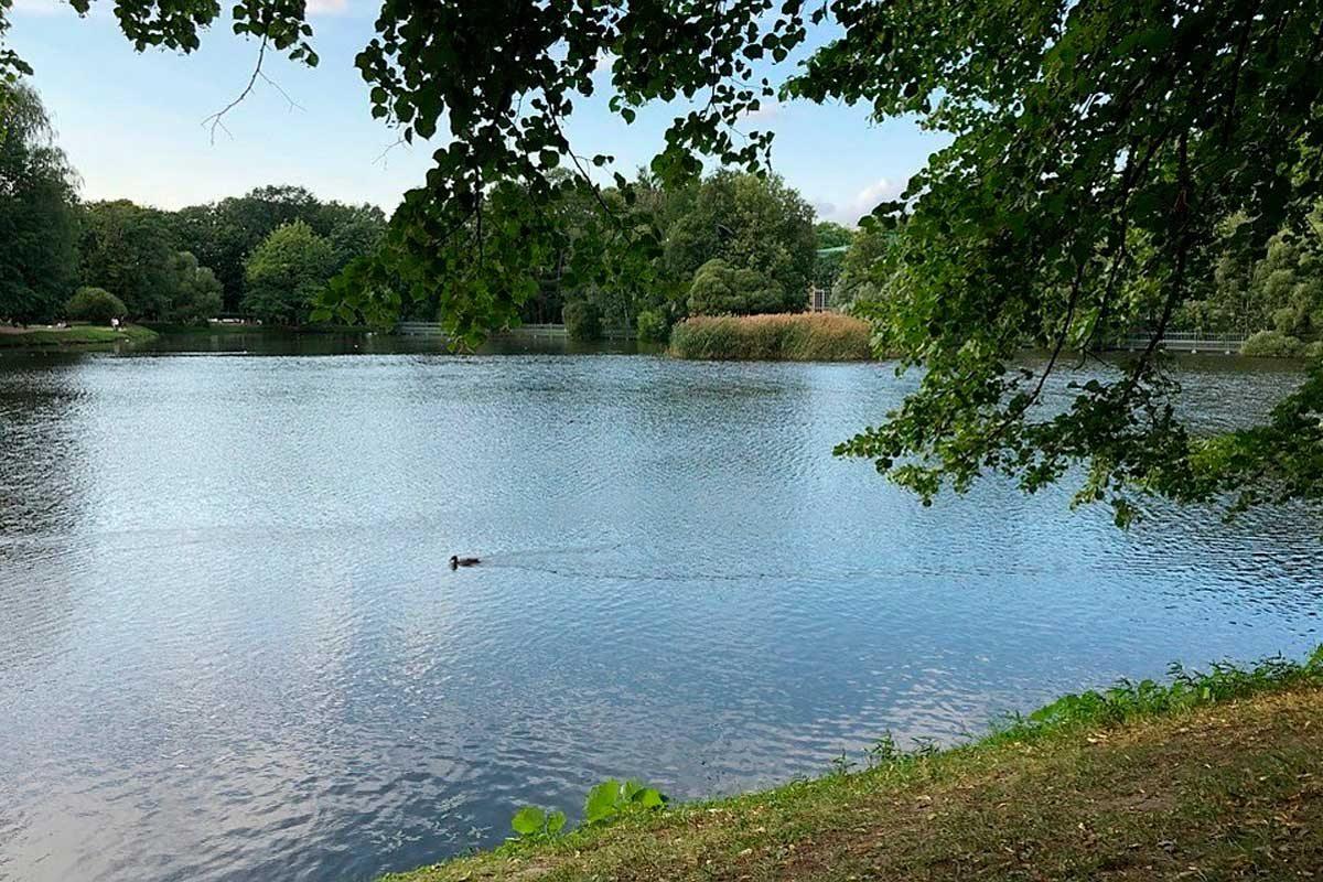 На Херсонщине прокуратура требует вернуть государству три пруда и землю водного фонда