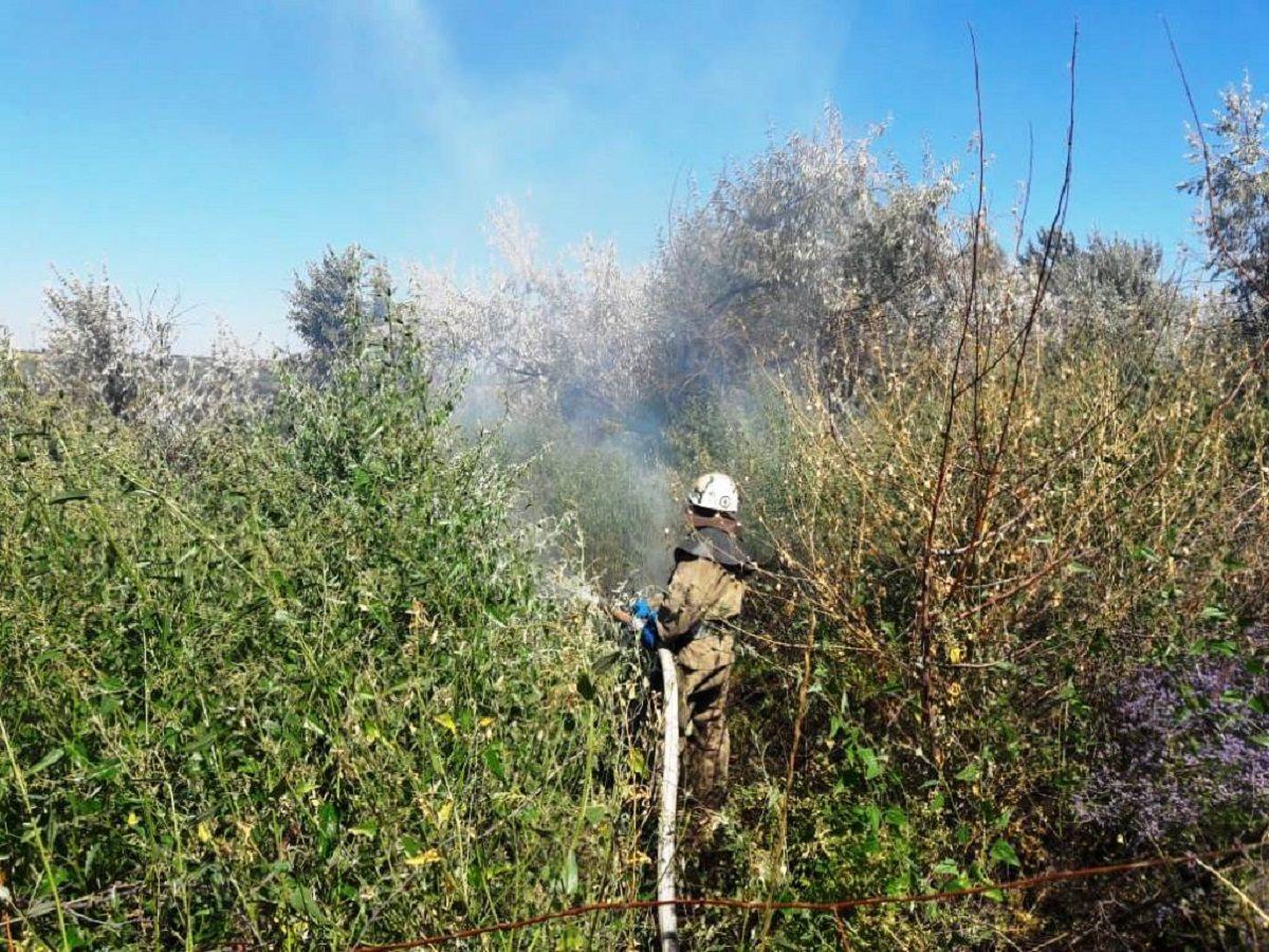 На Херсонщине ликвидировано 6 пожаров в экосистемах