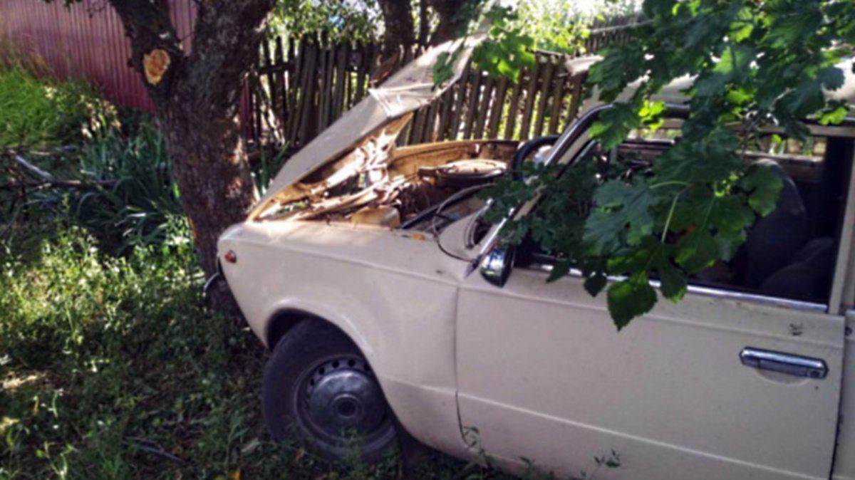 На Херсонщине ВАЗ врезался в дерево - полиция ведет расследование