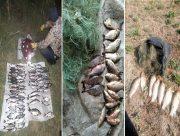 Херсонские рыбинспектора поймали браконьеров