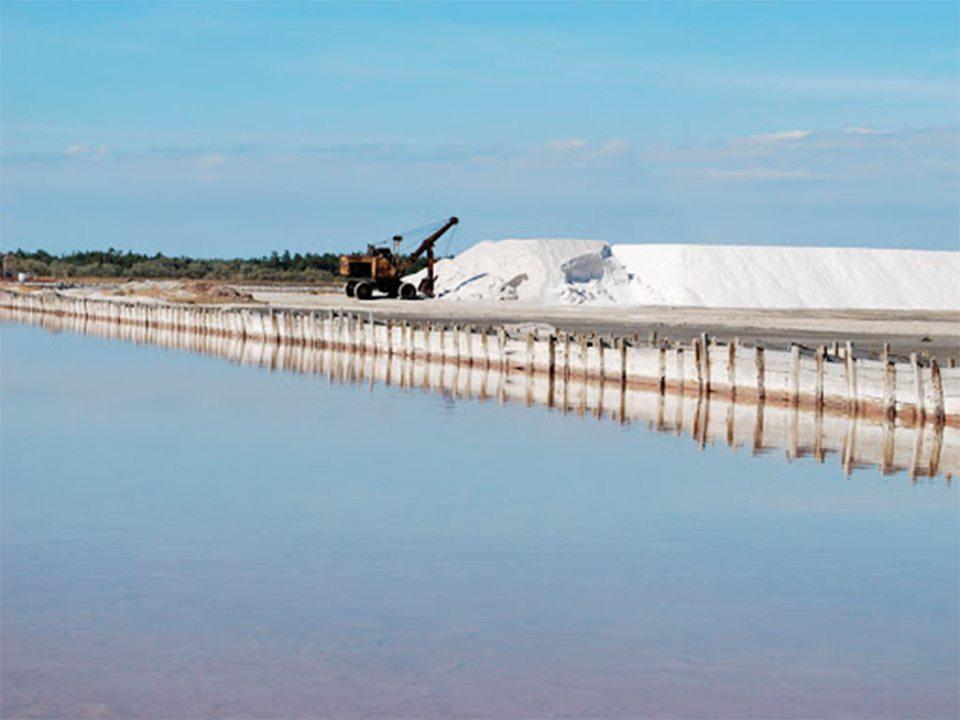 соляний завод, фонд держмайна
