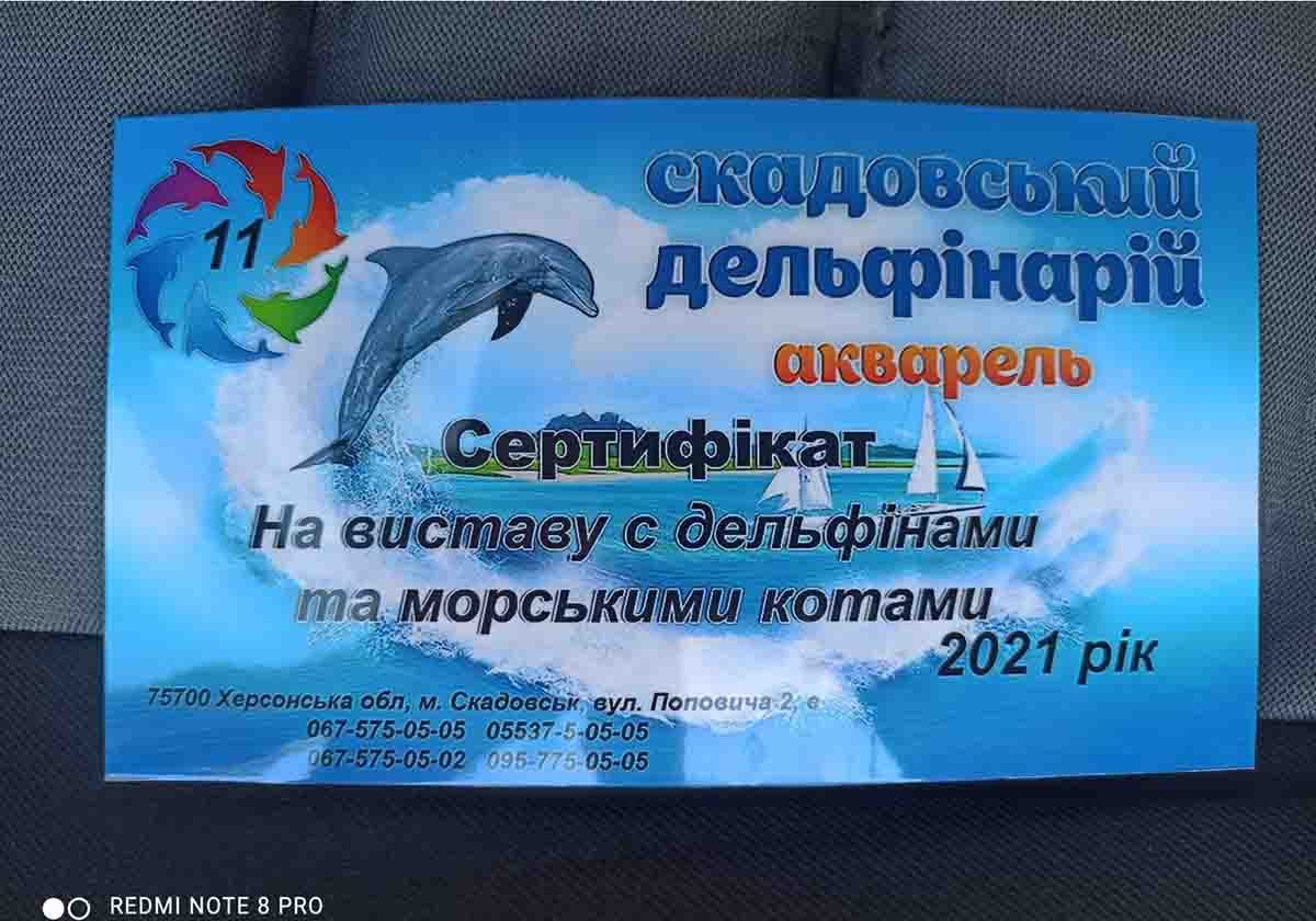 вакцинація, Скадовськ, дельфінарій