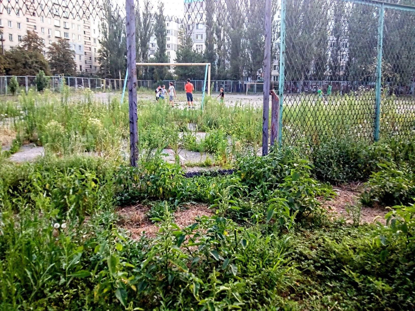 Любительский футбол в Херсоне