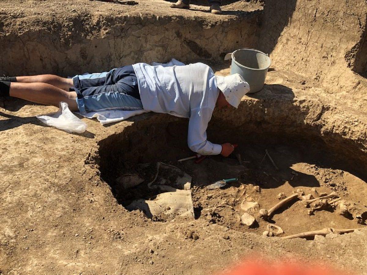 курган, счастливцево, археология, раскопки