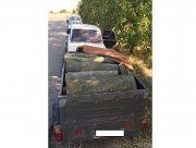 На Херсонщине полицейские остановили на трассе браконьера с полным прицепом дров