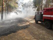 Новокаховские спасатели тушили лесной пожар
