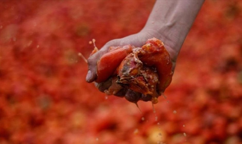помидоры, водитель, погиб