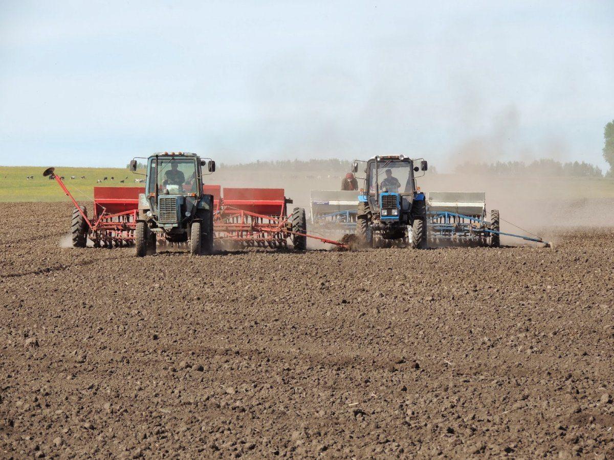 Осеннюю посевную на Херсонщине начали в засуху