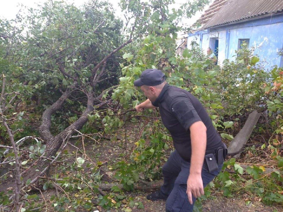 В Херсонской области продолжается ликвидация последствий урагана