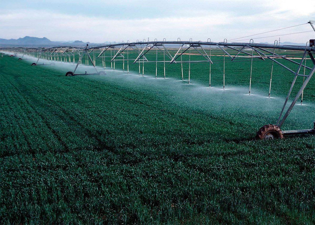 На Херсонщине аграрии использовали больше воды для полива