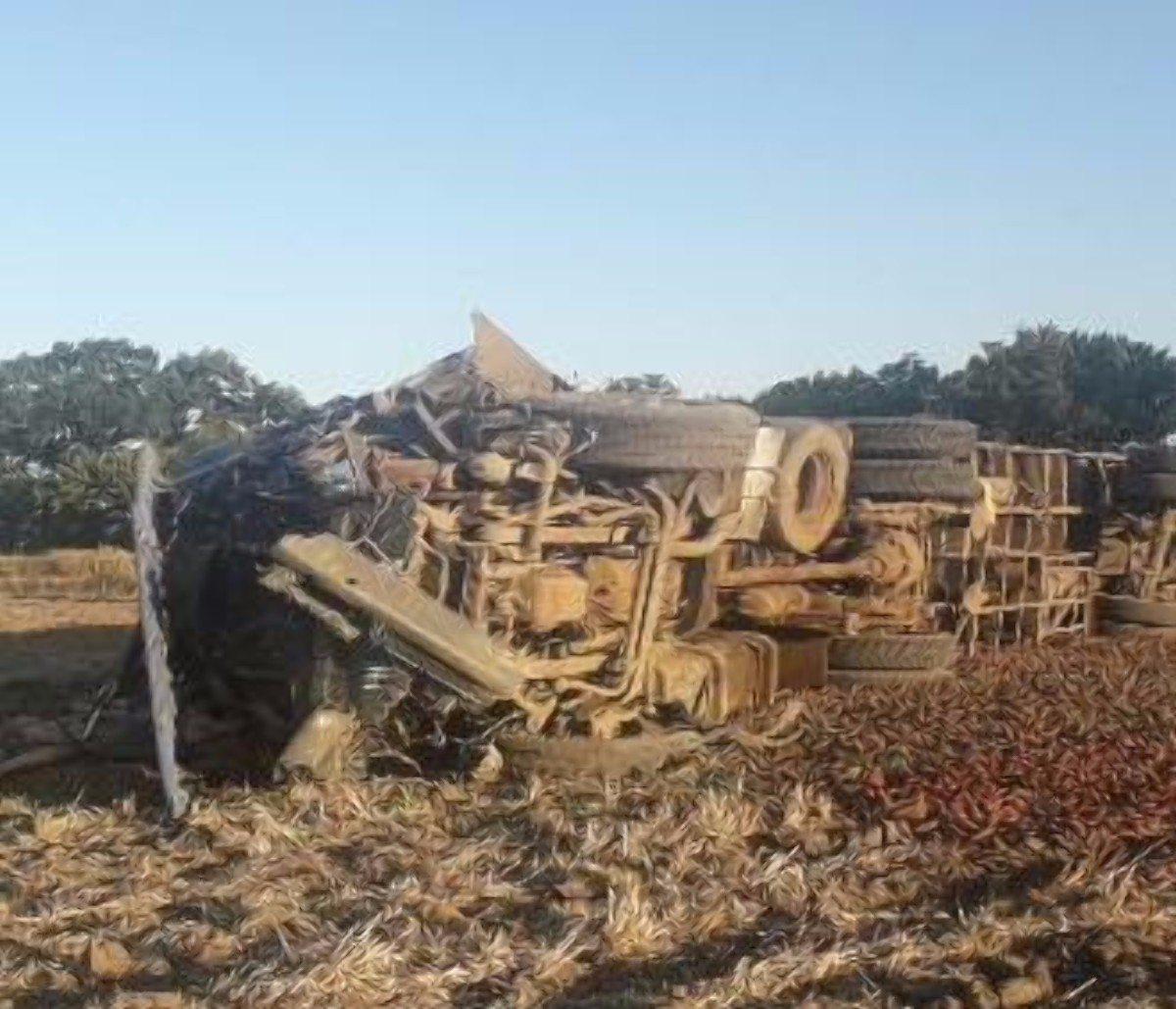 На Херсонщине в ДТП погиб водитель грузовика