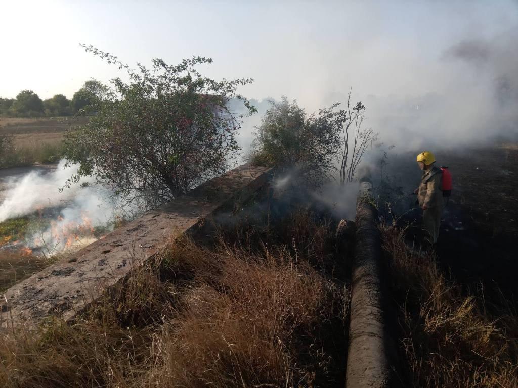 Житель Херсонщины тяжело обгорел, спасая козу из пожара