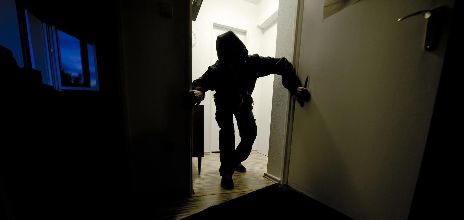 В Херсонской области задержали грабителя, ворвавшегося в дачный домик к женщине