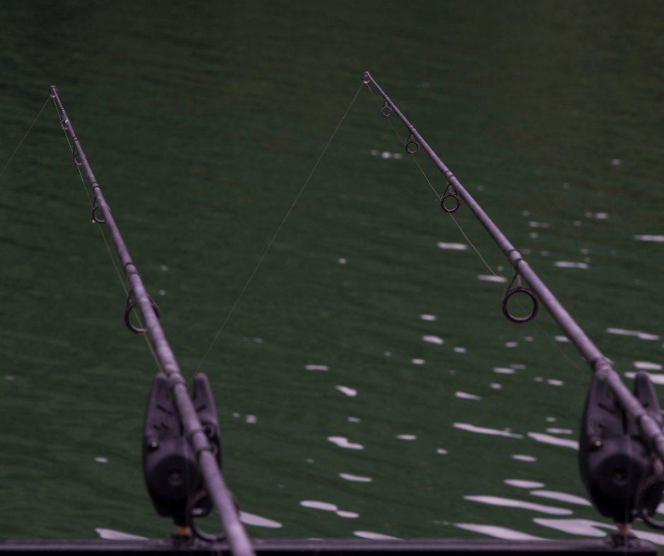 За незаконный улов рыбы планируют ужесточить штрафы