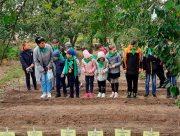 У Херсоні юні натуралісти висадили дерева