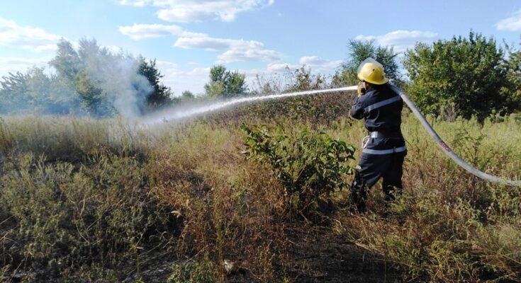 херсон, пожар, экосистема