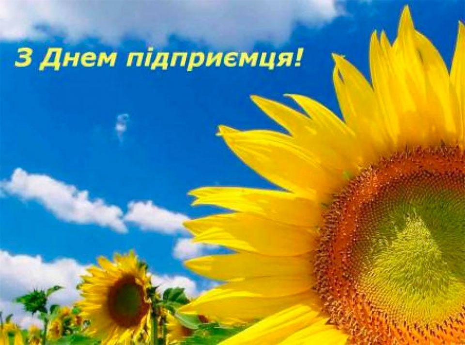 Олешки, привітання, Потоцький