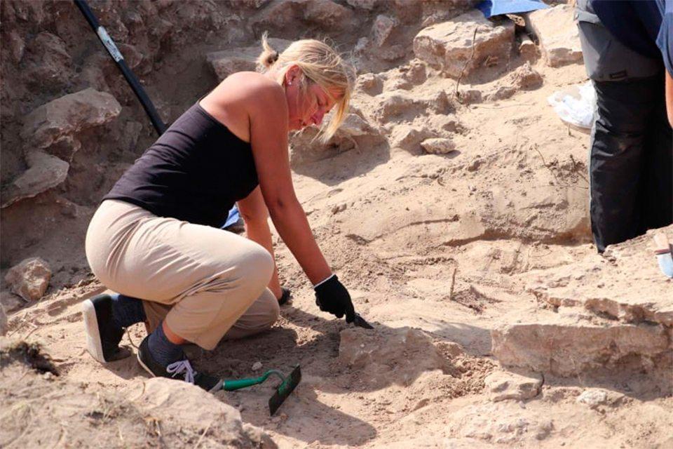 Камянська січ, експедиція, археологія