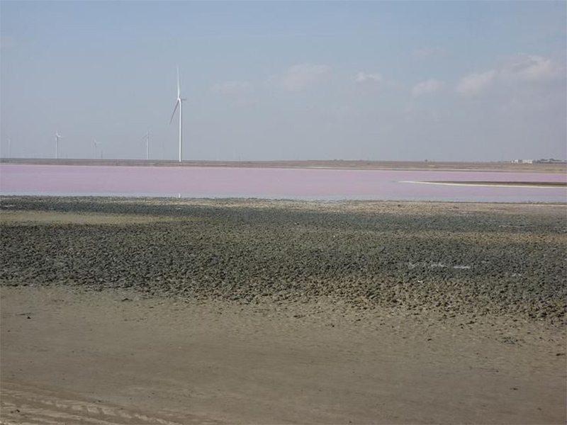 На Херсонщині Лемурійське озеро волає про порятунок