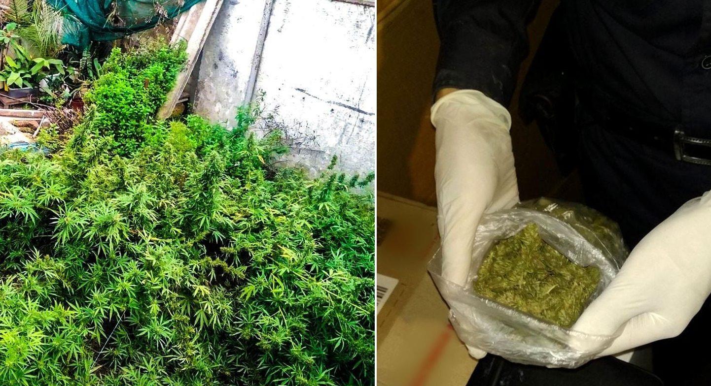 У мешканця Херсонщини вилучили понад кілограм наркотиків
