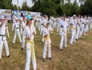 Из-за коронавируса в Скадовске отменили проведение учебно-тренировочных сборов по каратэ