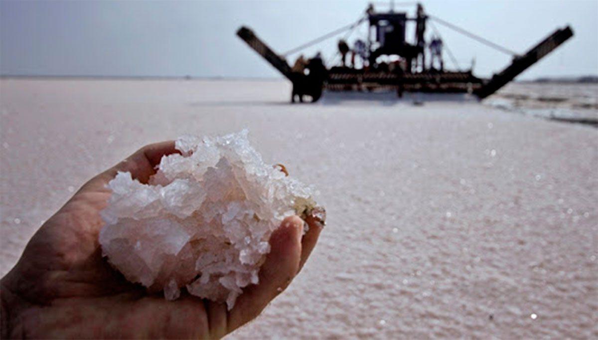На Херсонщине созрел новый урожай соли