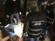 Херсонские пограничники обнаружили более 10 кг марихуаны