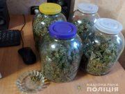 На Херсонщине семейная пара выращивала коноплю и хранила её в трёхлитровых банках