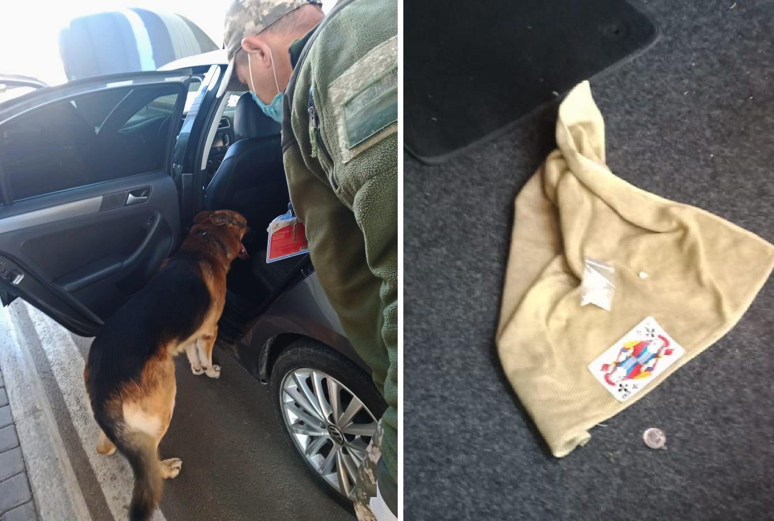 На границе с Крымом пограничный пёс обнаружил наркотики