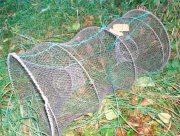На Херсонщині Нацпарк перетворився на браконьєрський рай