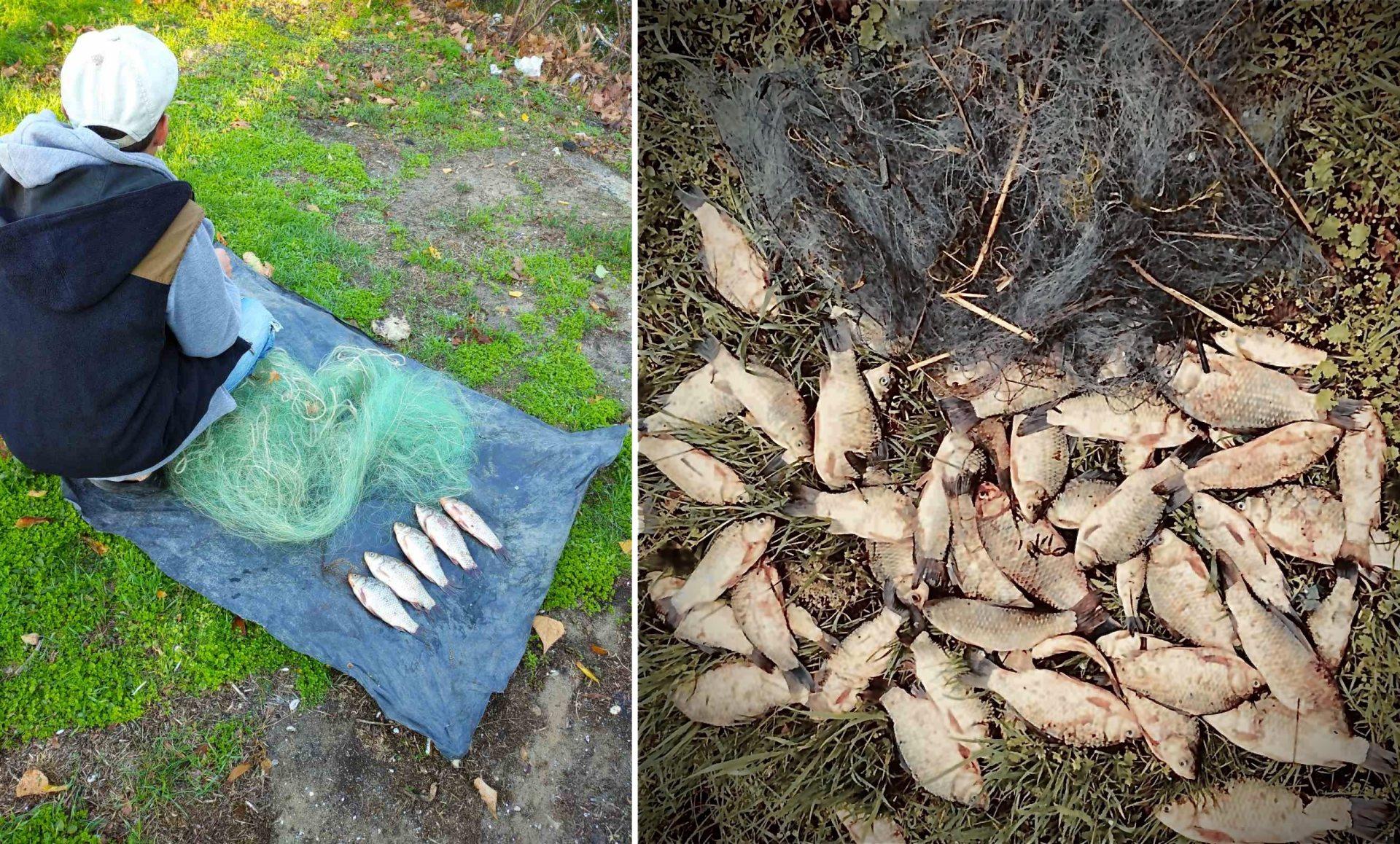 За добу на Херсонщині виявили трьох браконьєрів