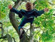В Херсоне мужчина упал с дерева