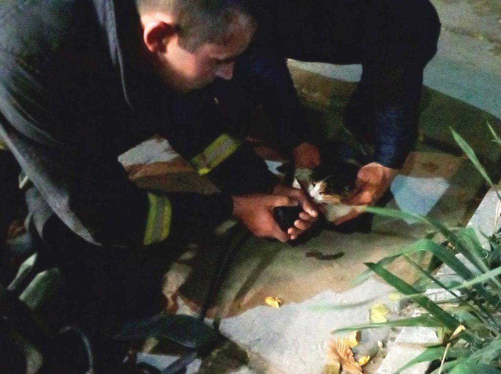 В Каховке спасатели вынесли из горящей квартиры мужчину и кота