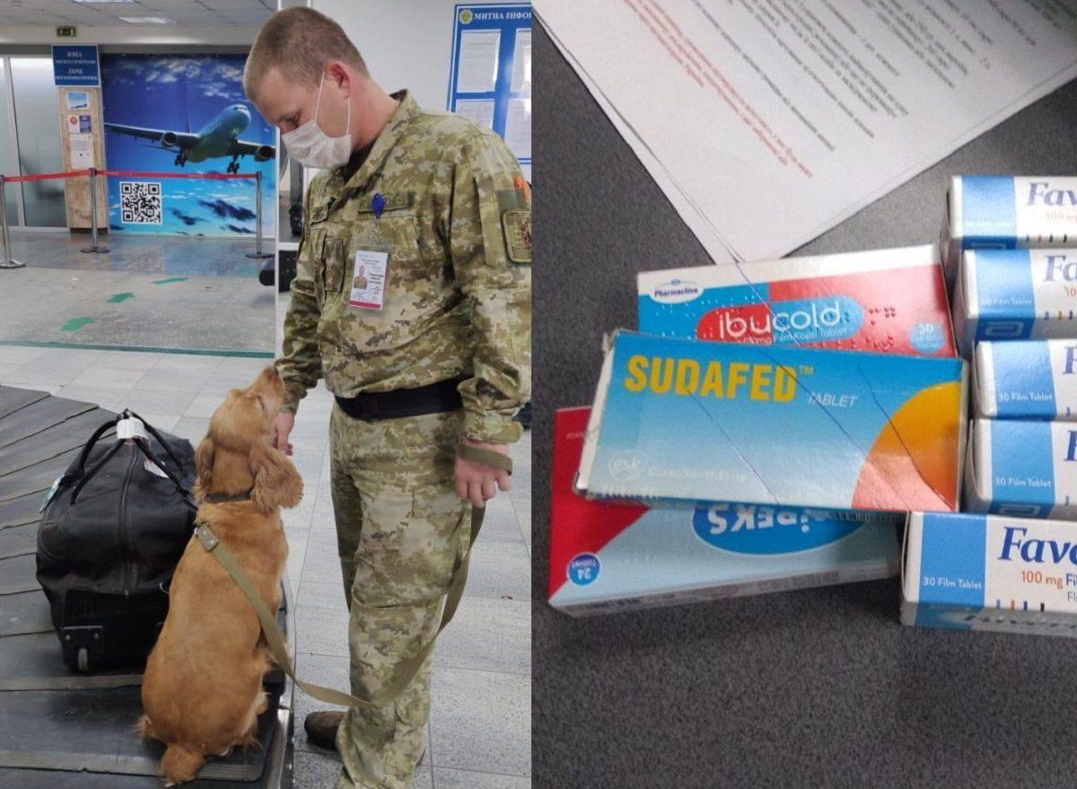 В аэропорту Херсона пограничный пёс обнаружил наркотики у турецкого гражданина