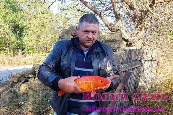 Житель Херсонщини вирощує екзотичних коропів